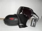 Gafas de sol Modelo Carrera Modelo Champion. OFERTA - mejor precio | unprecio.es