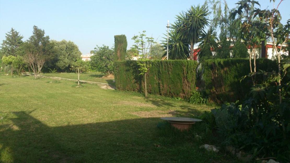 Alquiler casa de campo sanl car de barrameda mejor for Casas de campo en alquiler