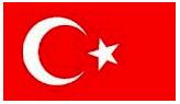 Traductor oficial castellano turco. barato