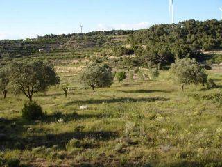 Finca/Casa Rural en venta en Vilalba dels Arcs, Tarragona (Costa Dorada)