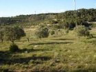 Finca/Casa Rural en venta en Vilalba dels Arcs, Tarragona (Costa Dorada) - mejor precio | unprecio.es