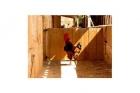 2 Dormitorio Casa Rurale En Venta en Ses Salines, Mallorca - mejor precio   unprecio.es