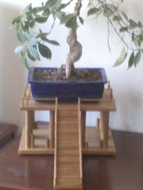 Mesas para bonsais mejor precio - Mesas para bonsai ...