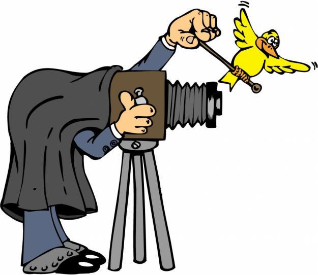 Reportajes fotograficos ( economicos ) todo tipo de eventos