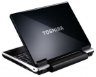 NETBOOK Toshiba NB100 - mejor precio | unprecio.es
