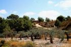 Vendo finca de lujo en Sierra de Altaona (Murcia) - mejor precio | unprecio.es