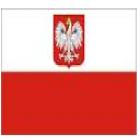 Traductor jurado  polaco. precios a convenir. entregas  24h - mejor precio | unprecio.es