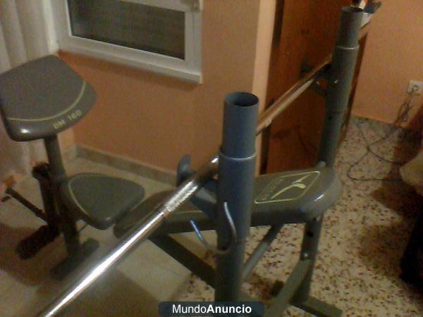 Annabessonova Ejercicios Banco Musculacion Domyos