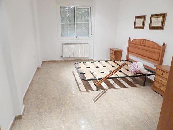 Piso en tomelloso 1561160 mejor precio - Alquiler pisos tomelloso ...