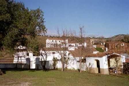 Finca dehesa 465 Ha. en Cáceres