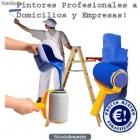 PINTOR DECORADOR - mejor precio | unprecio.es