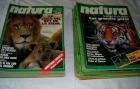 Natura. Lote de 53 revistas. Naturaleza. Animales - mejor precio | unprecio.es