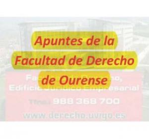 Todos Apuntes Grado Derecho Campus Ourense en CD
