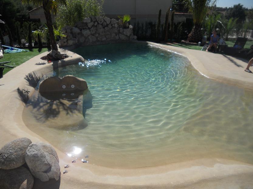 Hormigon proyectado piscinas limpieza y lechadas mejor for Piscinas hormigon proyectado