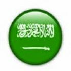 Traductor jurado árabe. precios a convenir. entregas  24h - mejor precio | unprecio.es