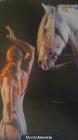 caballos para bodas bailes ecuestres - mejor precio   unprecio.es