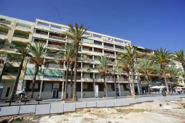 Apartamento en venta en torrevieja alicante costa blanca 1372943 mejor precio - Venta de apartamentos en torrevieja baratos ...