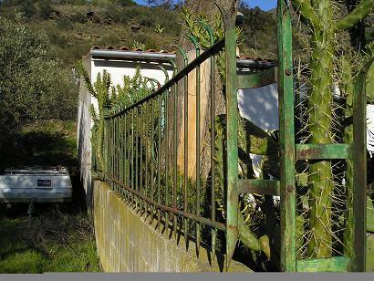 Rejas de forja para muro exterior jardin infranqueables for Rejas de jardin