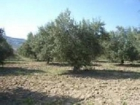 Comprar Terreno Alhama de Granada PARAJE DE BARTOLO - mejor precio | unprecio.es