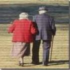 Chico hondureño cuidaría anciano - mejor precio   unprecio.es