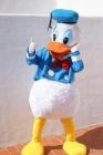 Mascotas profesionales de personajes infantiles - mejor precio | unprecio.es