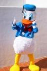 Disfraces profesionales de personajes infantiles de máxima actualidad - mejor precio | unprecio.es