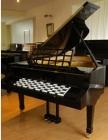 PIANO DE COLA UNICO - mejor precio | unprecio.es
