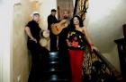 Musica cubana en Madrid,Cuarteto Candela Mi Son.para tus fiestas. - mejor precio | unprecio.es