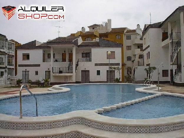 Apartamento en torrevieja 1507785 mejor precio - Alquilar apartamento en torrevieja ...