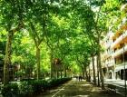 Alquilo la mejor habitacion de barcelona - mejor precio | unprecio.es