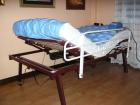 Cama ortopédica marca pardo - mejor precio | unprecio.es