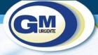 GM Urgente, a tiempo y en cualquier lugar del mundo. Transporte y Mensajería Urgente en Ma - mejor precio | unprecio.es
