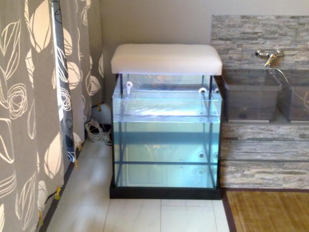 Vendo acuario spa con peces garra rufa para ictioterapia for Vendo peces