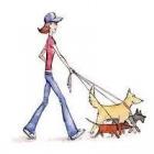 Paseadora de mascotas - mejor precio   unprecio.es
