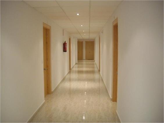 Apartamento en san pedro del pinatar 1556486 mejor - Casas de alquiler en san pedro del pinatar particulares ...