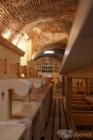 Comprar Finca rústica Salvatierra de los Barros En el pueblo de La Parra, a 5 kilometros - mejor precio | unprecio.es