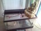 Vendo terrario equipado para iguana u otros reptiles 50€ en Sevilla - mejor precio | unprecio.es