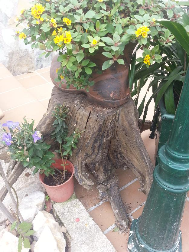 Troncos decoraci n 138553 mejor precio for Decoracion hogar vigo
