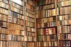 La Biblioteca del Traductor - Agencia de Traducción - mejor precio | unprecio.es