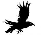 Vendo cuervos y crias de cuervo. - mejor precio   unprecio.es
