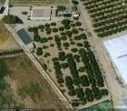 Casa de campo con 5.000 m2 de huerto san javier - mejor precio   unprecio.es