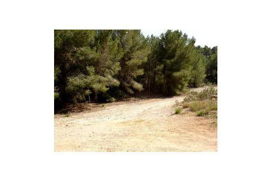 Terreno y Solares En Venta en Santa Ponsa, Mallorca