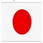 Traductor jurado  japonés. precios a convenir. entregas  24h - mejor precio | unprecio.es