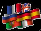 Traducciones (francés, inglés y español) - mejor precio | unprecio.es