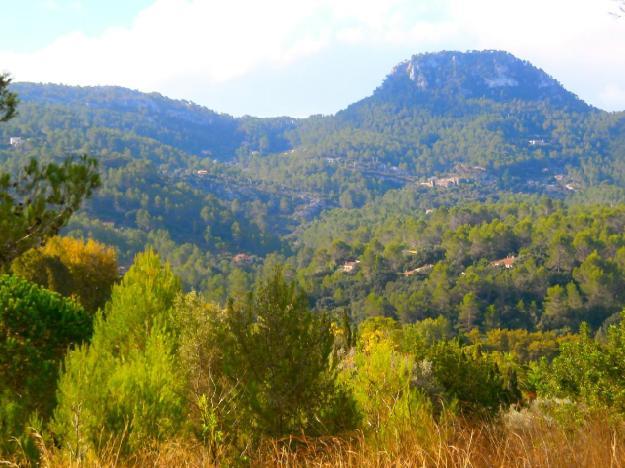 Terreno/Finca Rstica en venta en Puigpunyent, Mallorca (Balearic Islands)