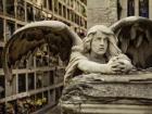 Nicho 1er piso en Cementerio de Montjuïc - mejor precio | unprecio.es