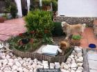 Guarderia de mascotas - mejor precio | unprecio.es