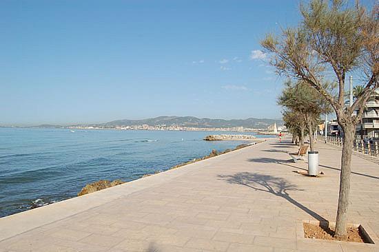Piso En Palma De Mallorca 1456719 Mejor Precio
